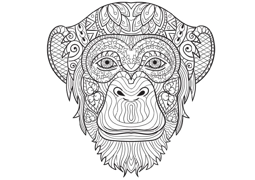 Sea Animals Printable Coloring Pages Animal For Adults Kids Free ... | 595x842