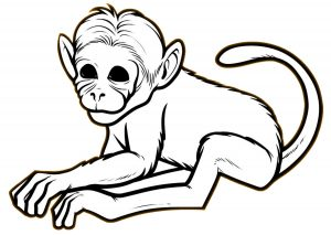 Cute And Realistic Looking Baby Monkey Coloring Pages