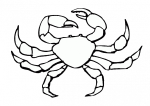 Simple and Easy Crab Coloring Pages