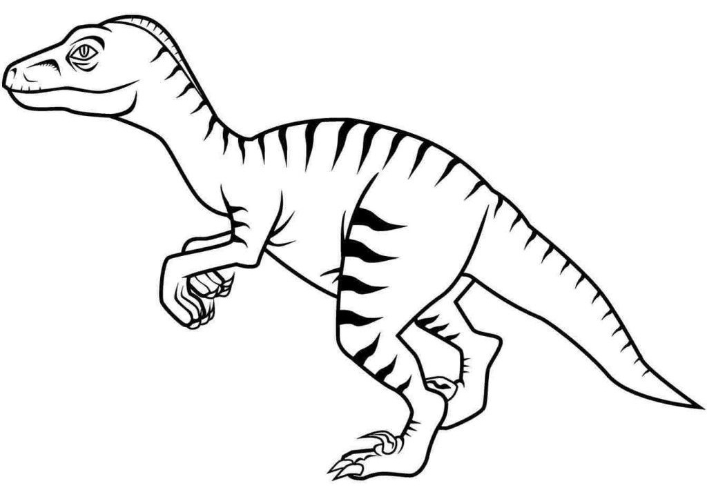 Raptor Dinosaur Coloring Page Velociraptor Print and Color Pages