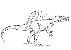 Spinosaurus Dinosaur Coloring Page Real Like Dinosaur