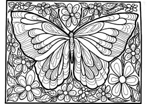 Detailed and Difficult to Color Hard Butterfly Coloring Pages for Adults