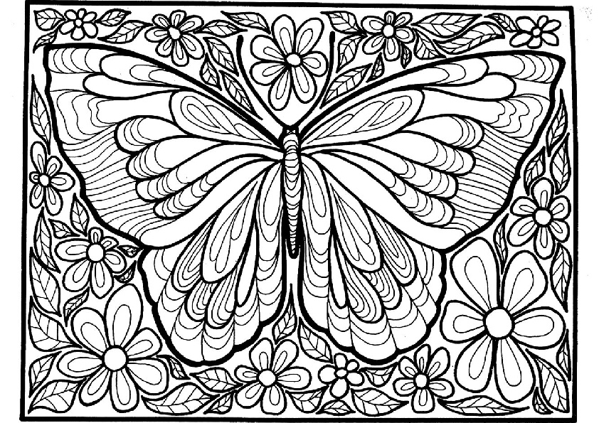 Detailed and Difficult to Color Hard Butterfly Coloring ...
