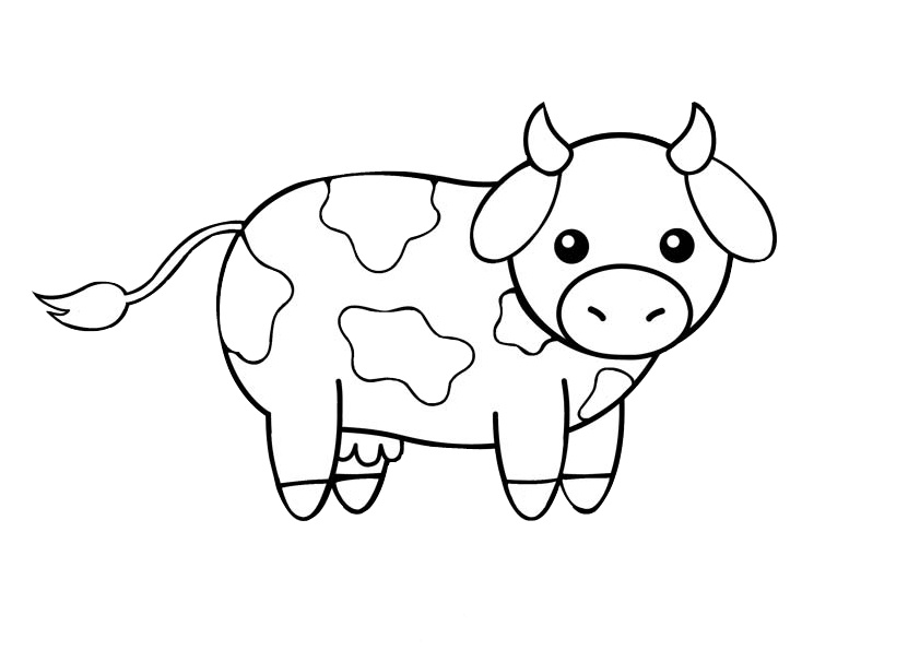 Easy Draw and Color Printable Cow Coloring Pages