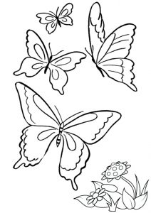 Free Printable Group of Butterflies Coloring Pages