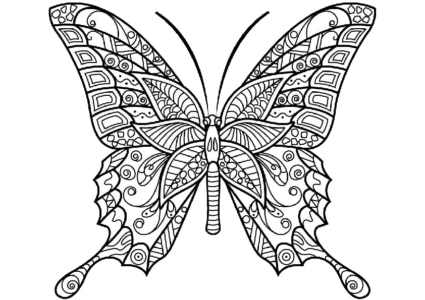 Mandala Hard to Color Adult Butterfly Coloring Pages