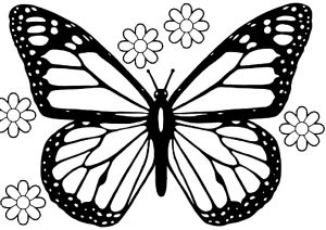 Monarch Butterfly Coloring Pages with Simple Flowers