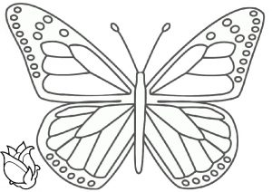 Simple Butterfly Picture Easy to Color Printable Page