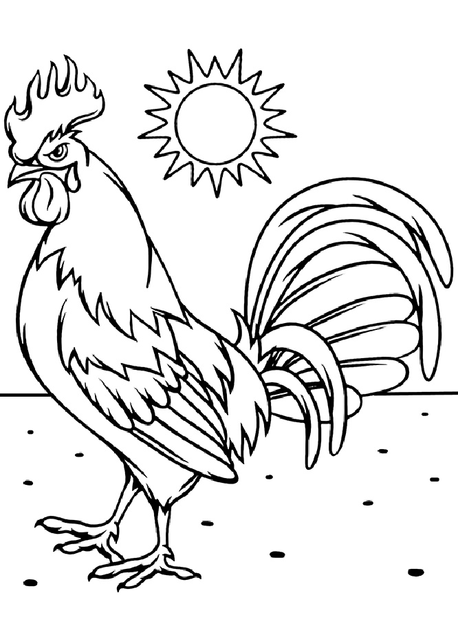Funny and Angry Little Rooster Coloring Pages