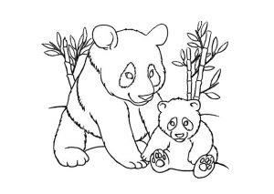 Lazy Panda Bear Coloring Pages