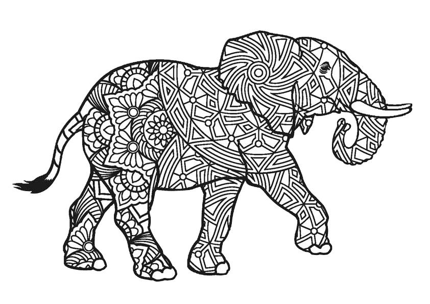 Mandala Adult Animals Elephant Coloring Pages - Print ...
