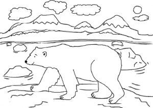 Polar Bear Printable Coloring Pages