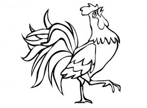 Rooster Coloring Pages for Kids: Animals & Birds Coloring