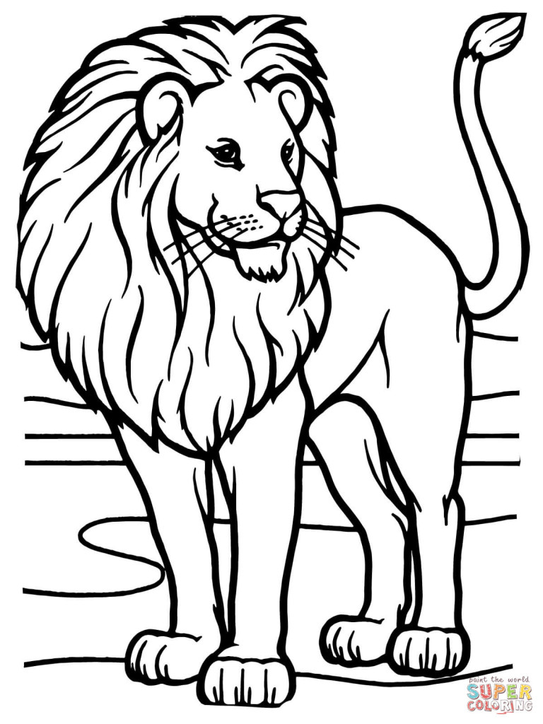 lion coloring pages (1)