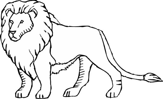 lion coloring pages (3)