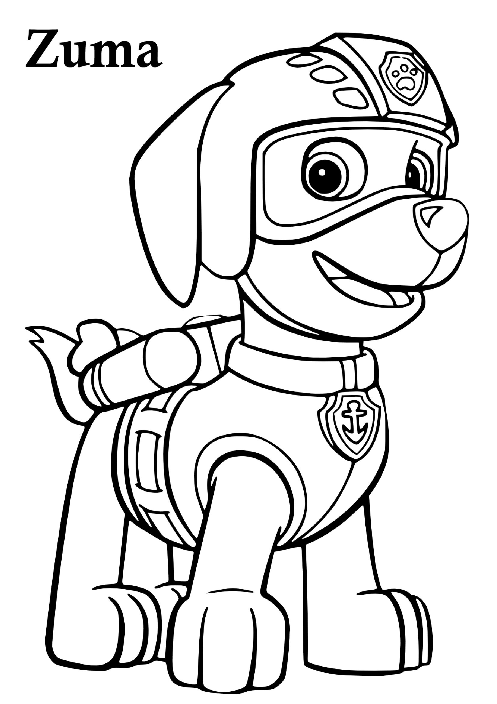 36 Paw Patrol Coloring Pages {Download All Characters} - Print