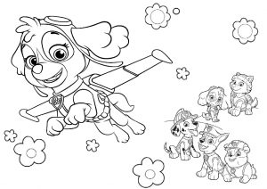 Skye and Paw Patrol Pups Coloring Pages for Girls