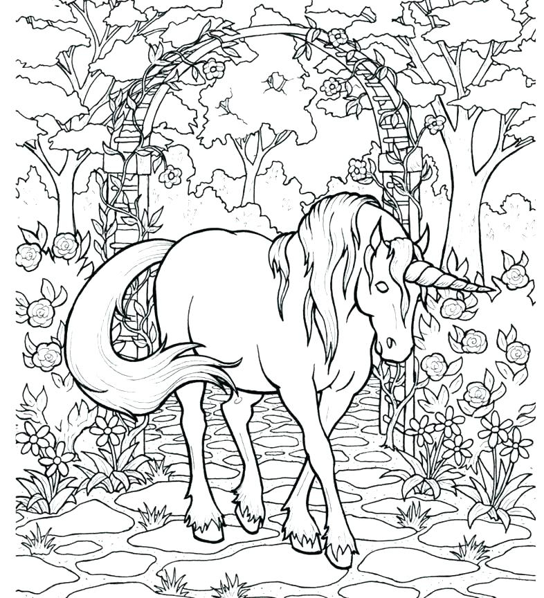 Hard Coloring Pages Of Unicorns Print Color Craftrhprintcolorcraft: Coloring Pages Unicorn Hard At Baymontmadison.com